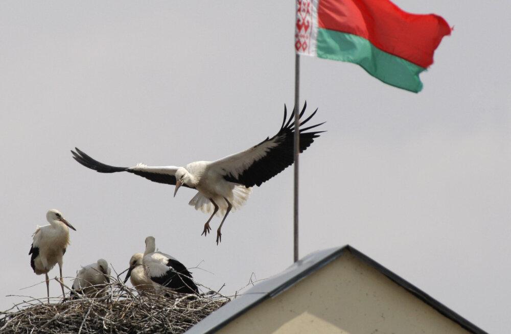 С воскресенья Белоруссия расширит территорию безвизового режима для туристов из Эстонии