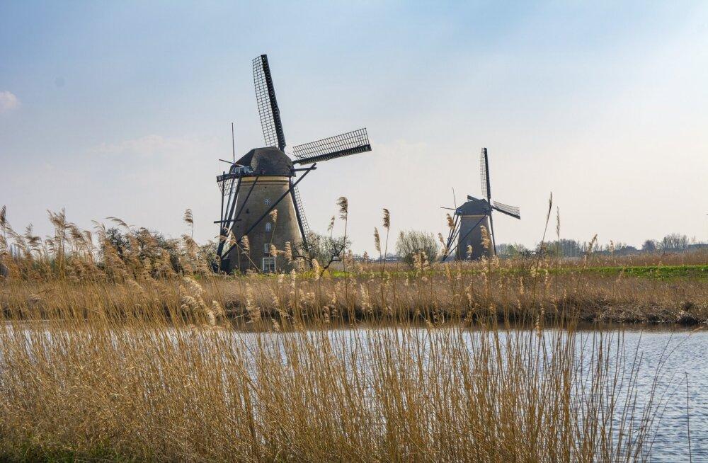"""Власти Нидерландов не хотят, чтобы страну называли """"Голландия"""""""