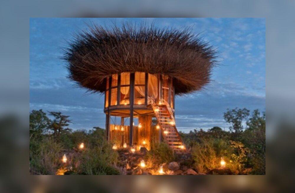 Туристам предложили пожить в пятизвездочной гостинице в виде птичьего гнезда