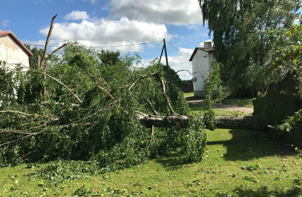 Torm piitustas Kärevete küla, katused lendasid ja puud murdusid