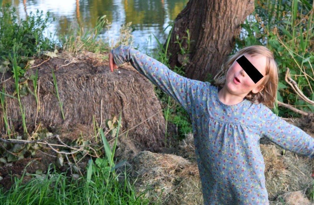 В Нидерландах служба защиты детей забрала дочь у эстонской художницы