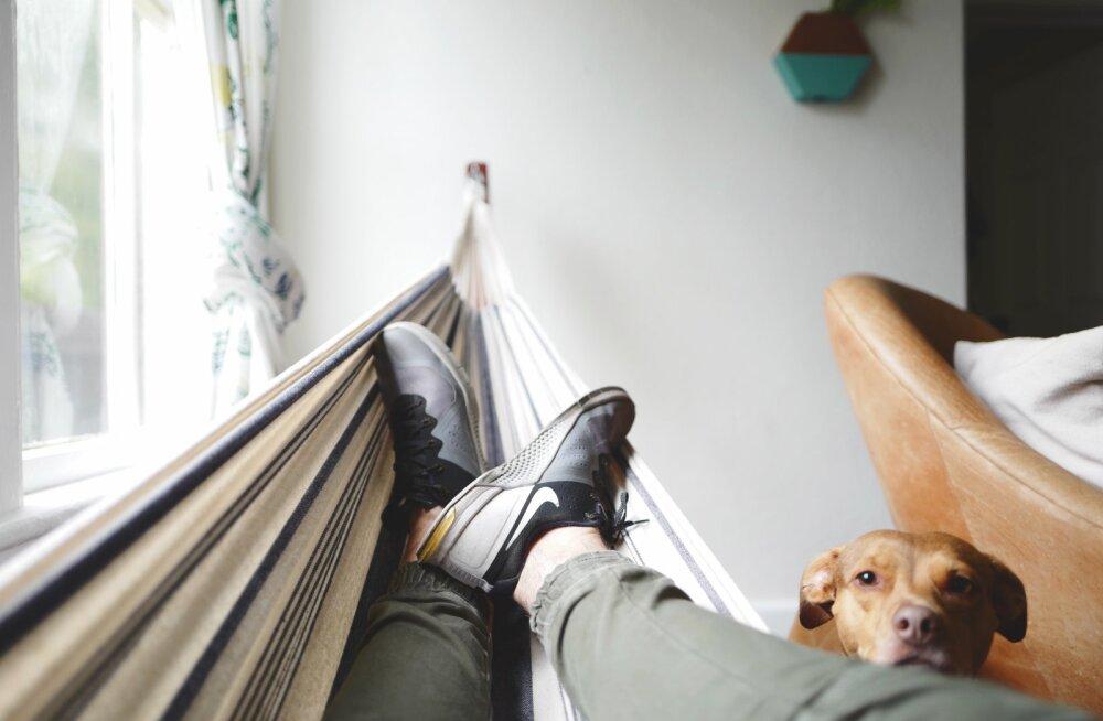 Diivanimeeste mugav elu: mu naisel on ambitsioone meie mõlema eest. Mul pole isegi pangakaarti