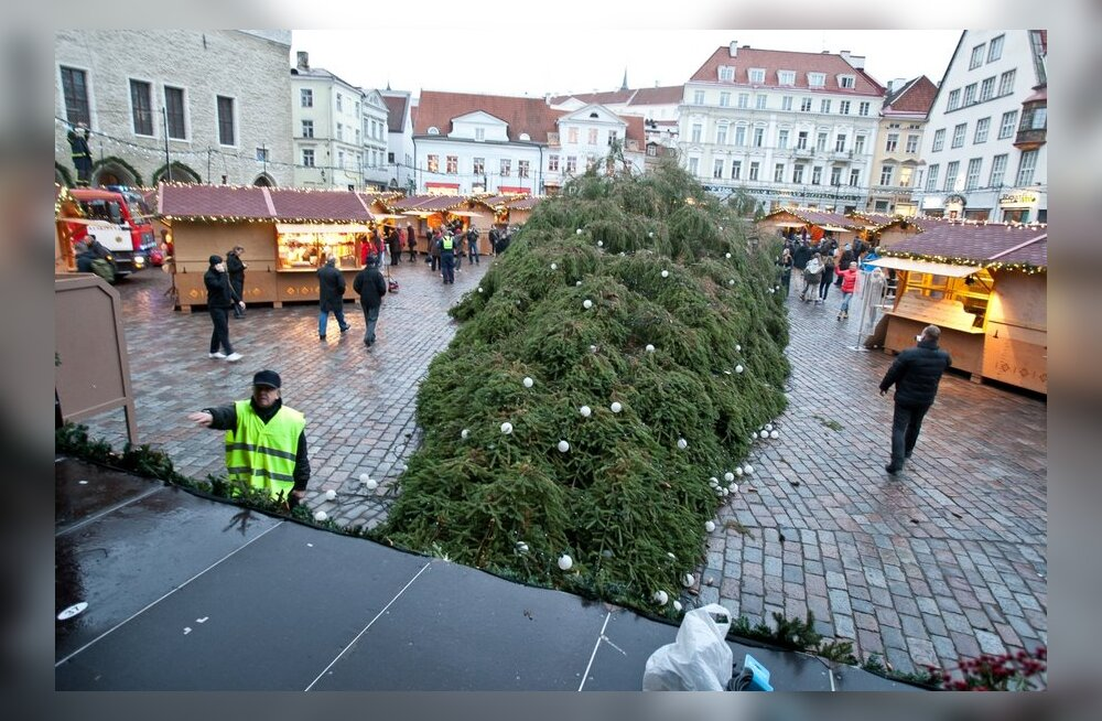 Jõulukuusk kukkus ümber