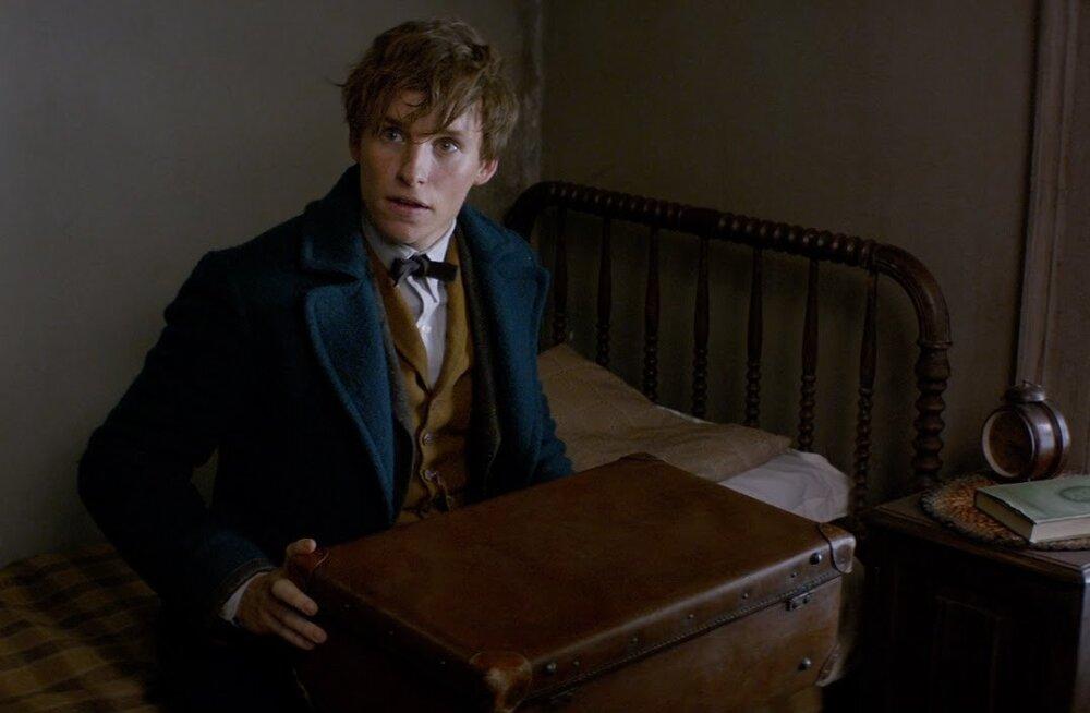 """TREILER: """"Fantastilised elukad ja kust neid leida"""" tutvustab Harry Potteri maailma maagilisi olendeid"""