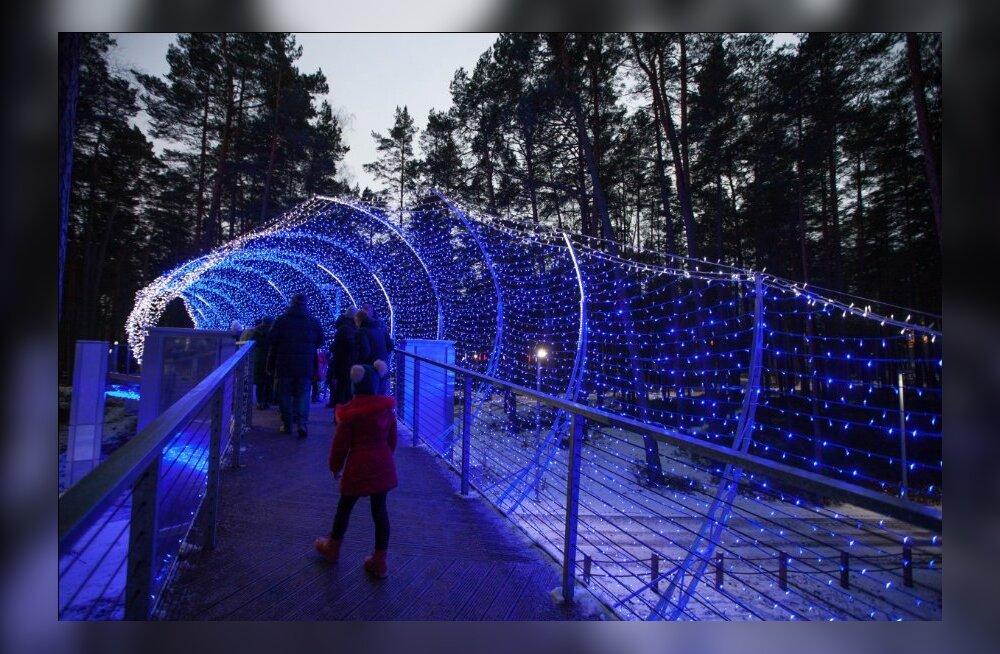 ФОТО: В Юрмале открылся самый большой в Латвии парк световых скульптур
