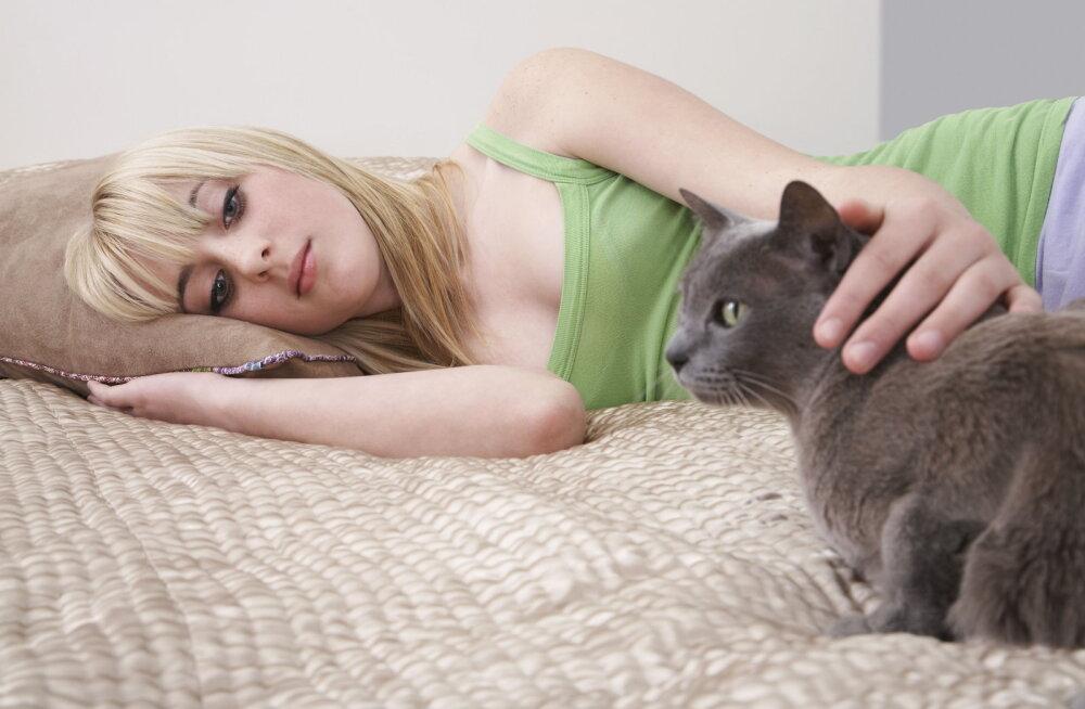Kas kiisuga öösiti voodit jagades on võimalik ennast korralikult välja puhata?