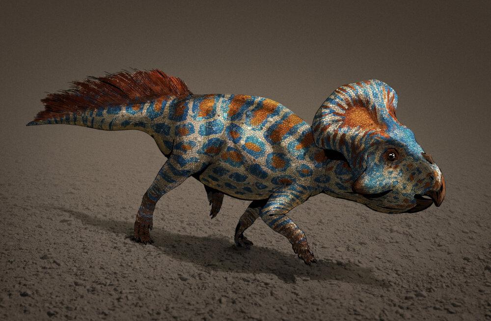 Kümneaastane poiss avastas Londoni loodusmuuseumi dinosauruste väljapanekult korraliku prohmaka