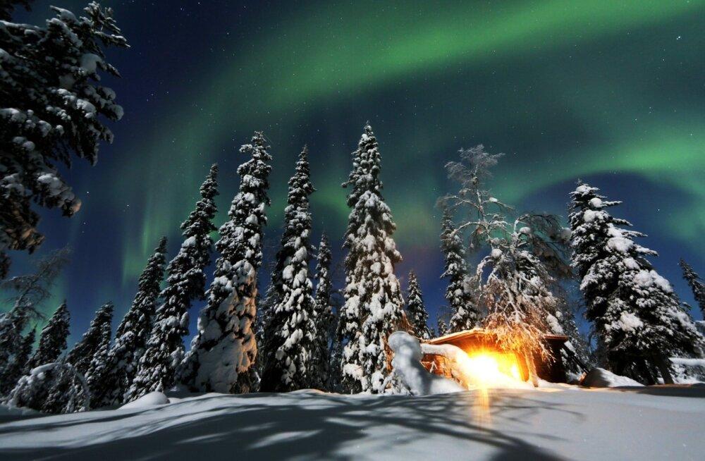 Каждый четвертый житель Эстонии путешествует на Рождество один. Куда, зачем, а главное — почему?