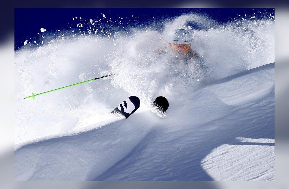 UURING: Mäesuusatajad naudivad mägesid rohkem kui lumelaudurid