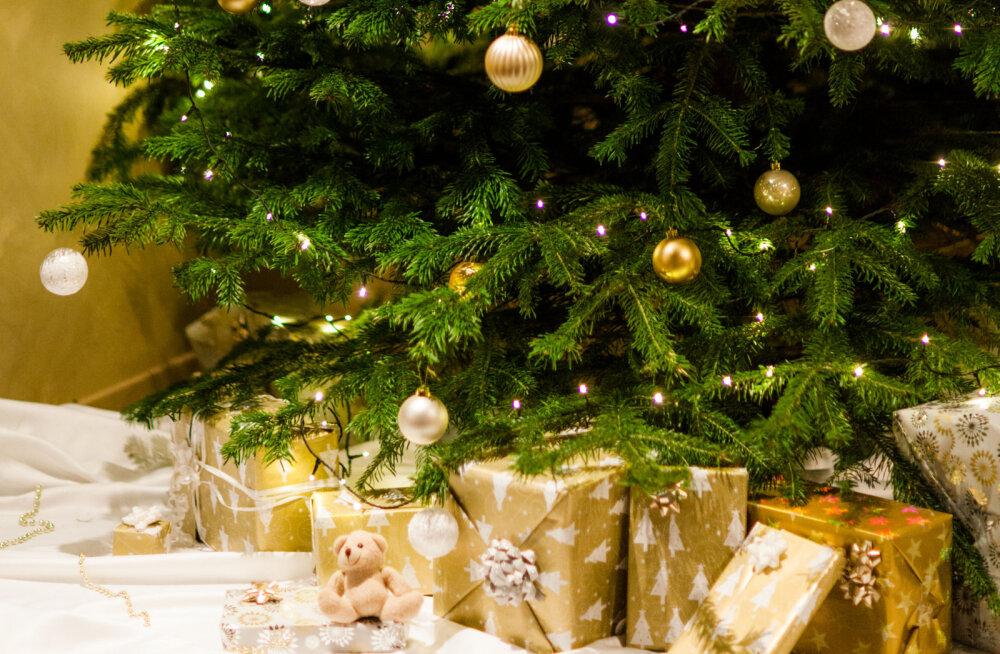 Unikaalne jõulupidu ootab Sind