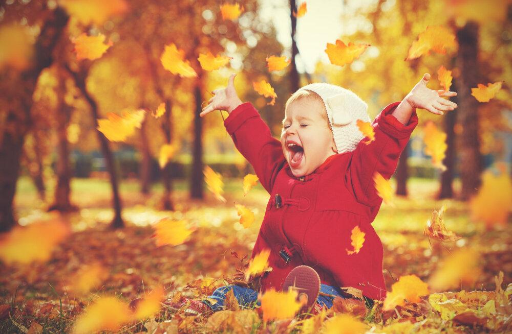 ГОРОСКОП НА 1 СЕНТЯБРЯ: Привет, осень!