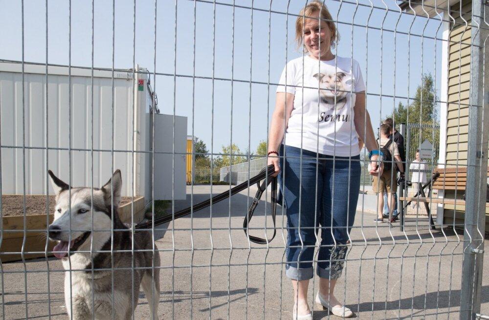 Tallinna loomade varjupaik