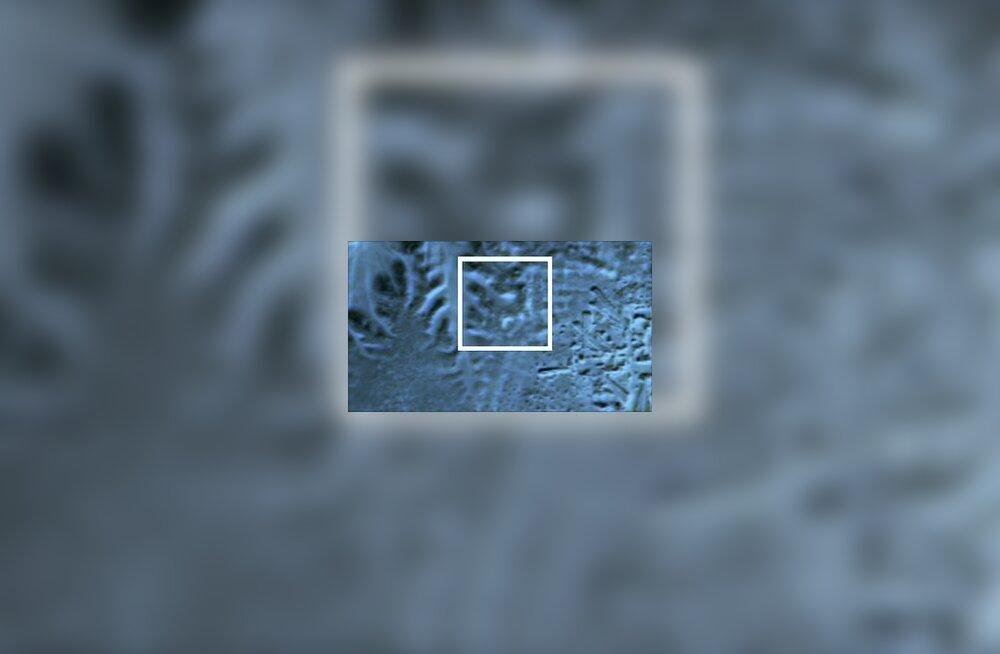 Infrapunasatelliidi fotol asub püramiid selle ruudu keskel