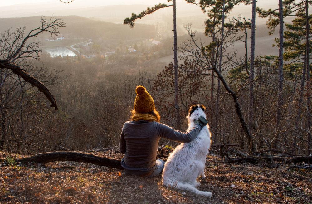 Koerakoolitaja Kati Ernits: kui koera vaimse tervise eest ei hoolitse, võib see viia ka füüsilise tervise probleemideni