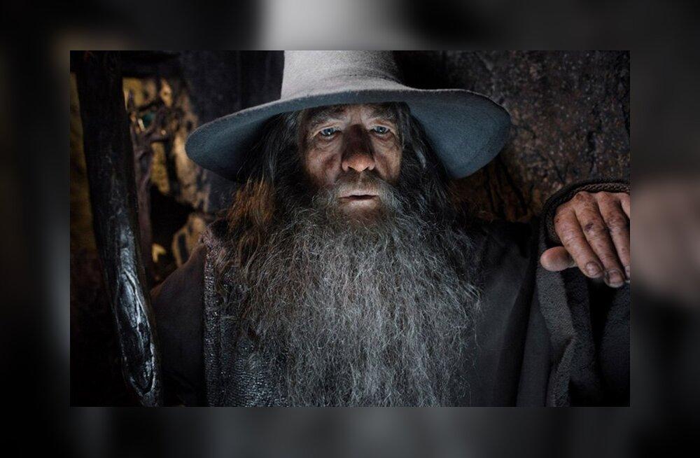 """Miks keeldus Ian McKellen """"Harry Potteri"""" seerias Dumbledore'i kehastamisest?"""
