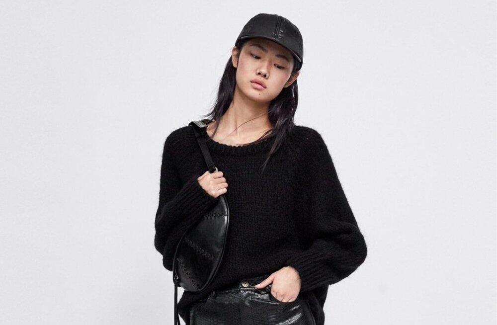 1. Reljeefse loomanahamustriga kunstnahast must seelik. Lõhikud muudavad selle seksikaks, taskud aga praktiliseks. Seeliku hind 39.95, sviitril 39.95, tviidist mütsil 15.95