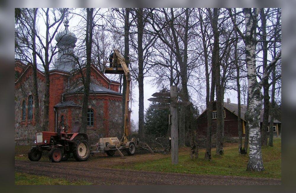 Remonditud kellatorn lõigati puude seest välja