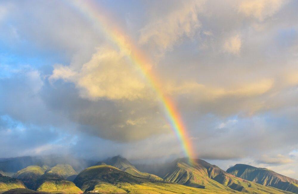 10 küsimust, mida peaksid iga kuu aja järel endalt küsima, et oma elu uuesti õigele rajale tagasi saada