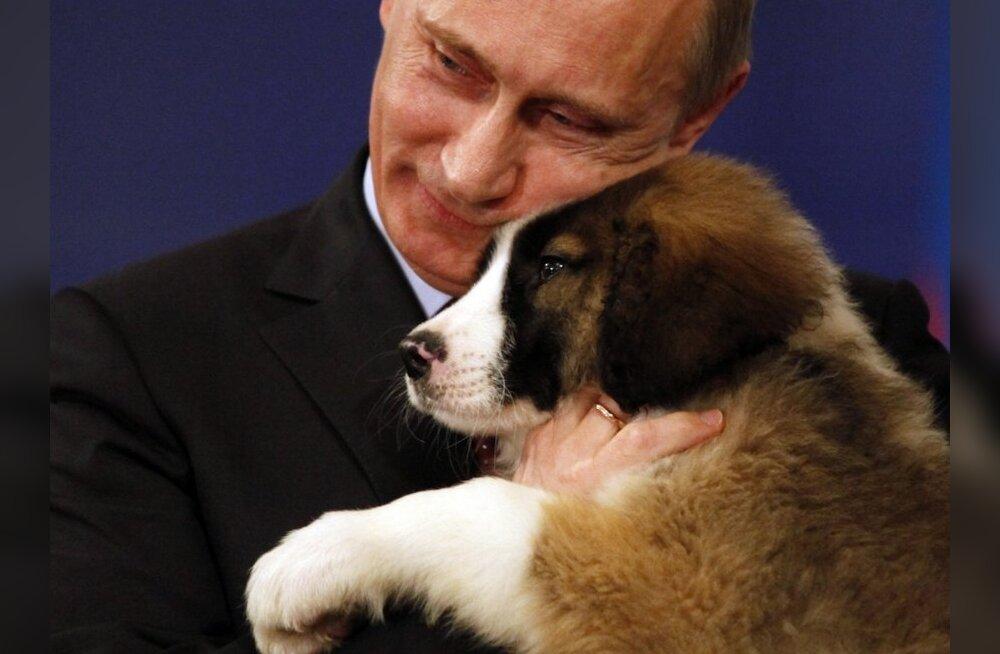 Ärimees: Putin sai oligarhidelt sadu miljoneid dollareid