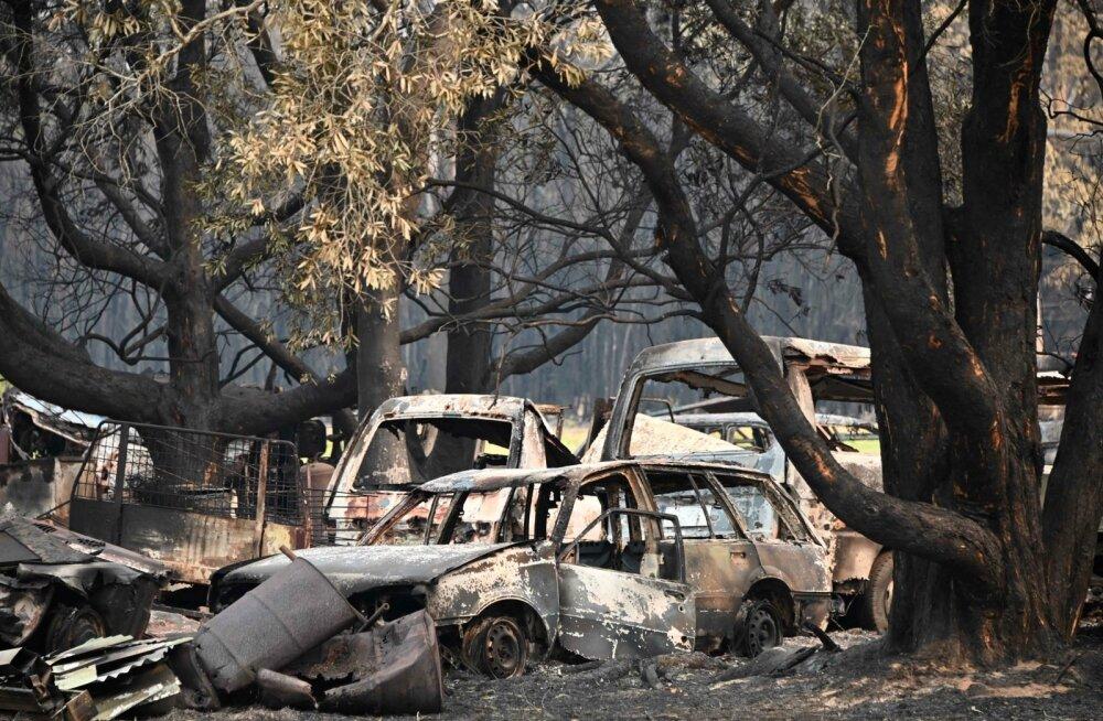 Ida-Austraalia metsapõlengute ohvriteks on langenud paljud sõiduautod. WRC autosid soovitakse säärasest saatusest säästa.