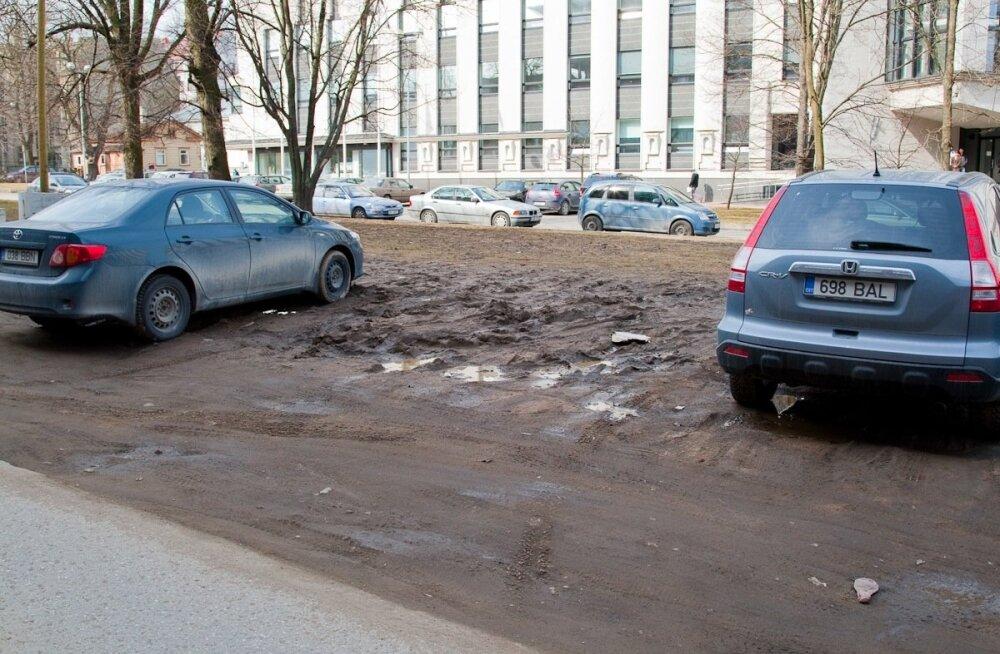 parkimine haljasalal