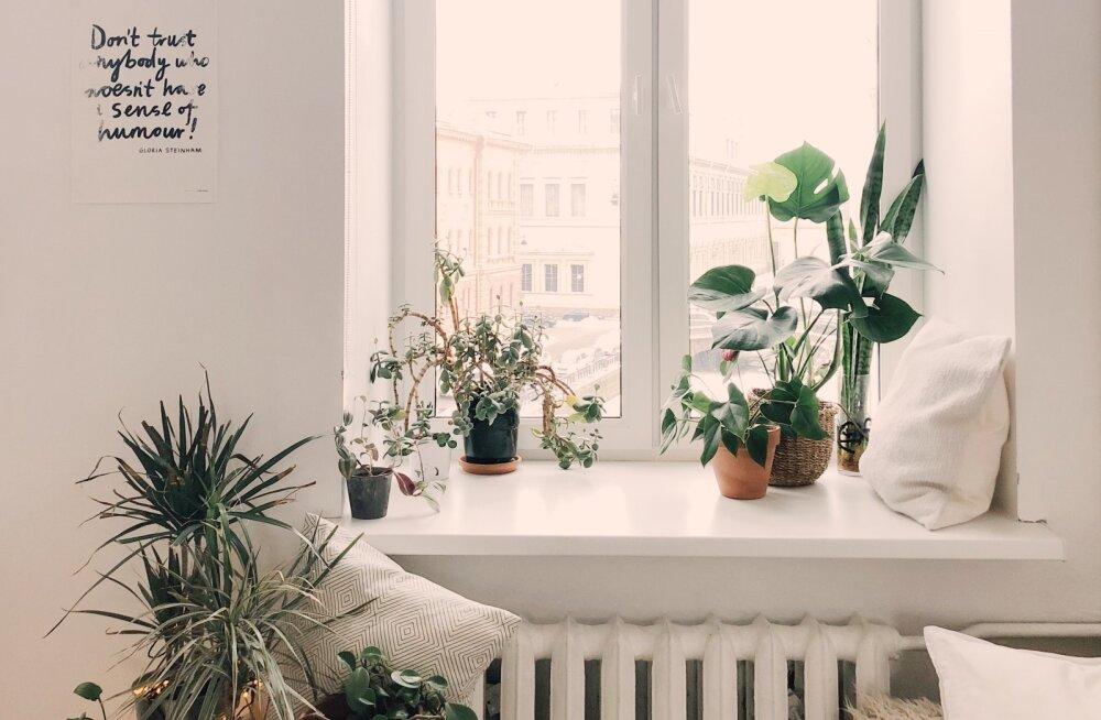 12 asja, mis võiksid igal endast lugupidaval naisel kodus olemas olla