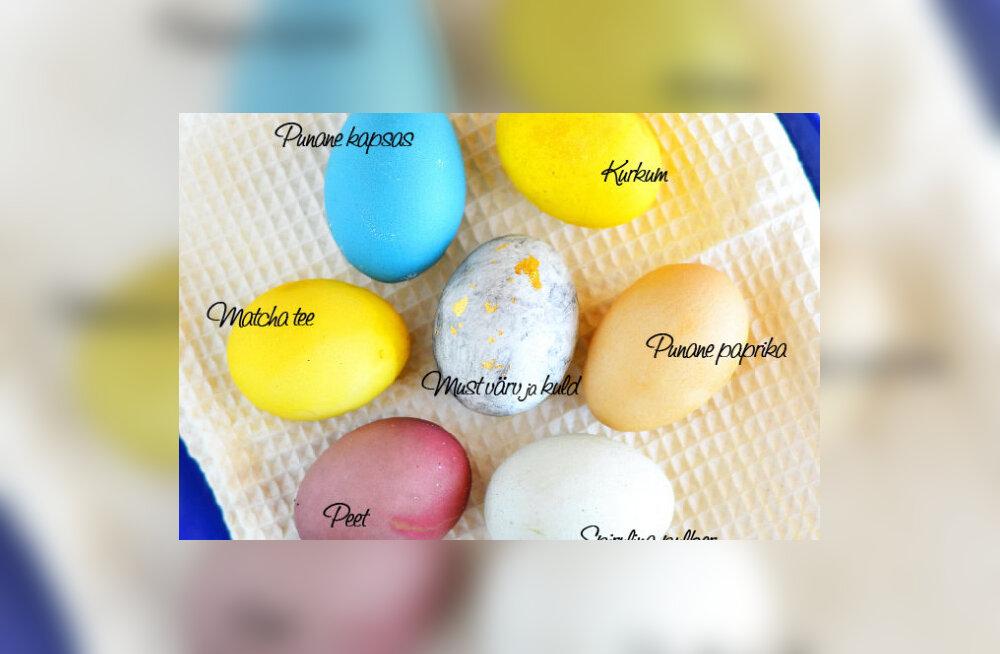 Lihavõtetel munad kirjuks looduslike vahenditega: kas peet teeb punaseks ja kurkum kollaseks?