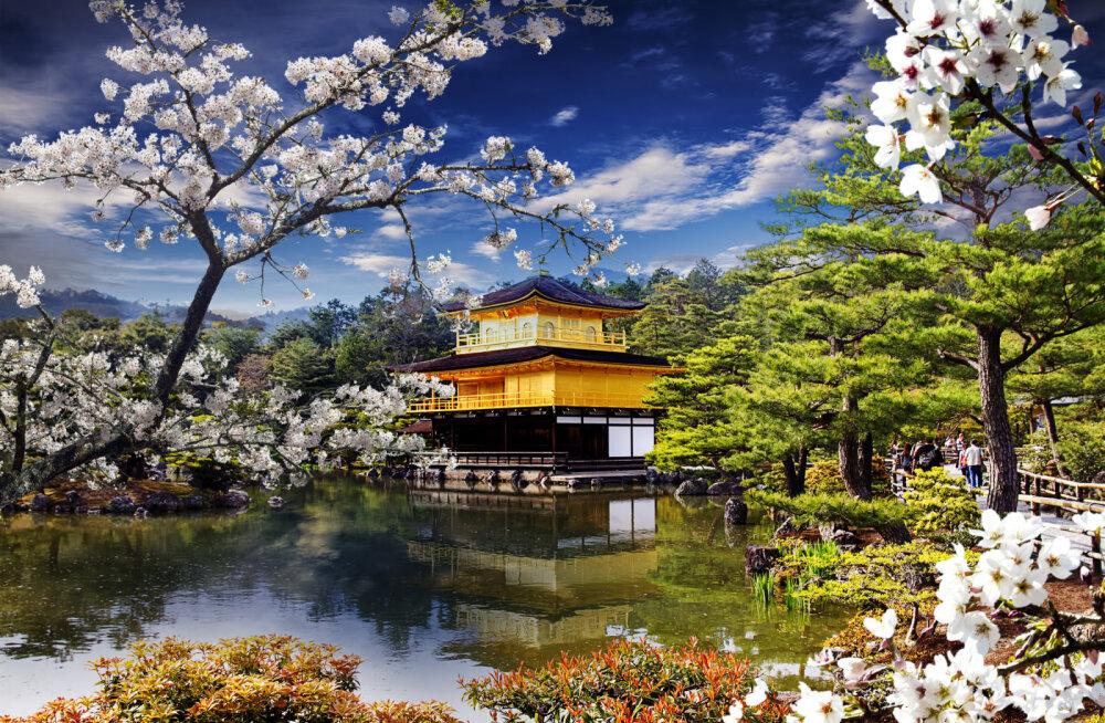 IMELINE! Jaapanlased on ehitanud maailma kõige vapustavama helide aia