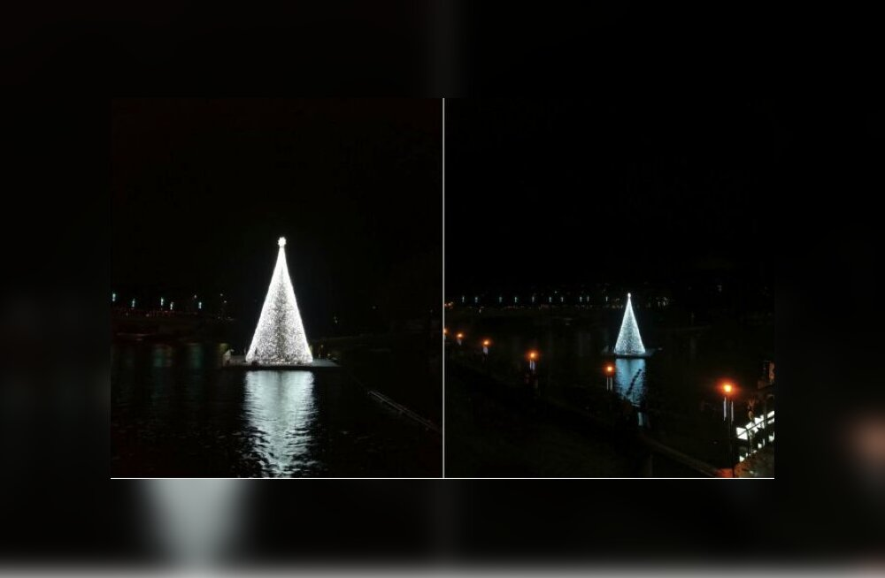 ФОТО: В Литве рождественскую елку установили прямо на реке