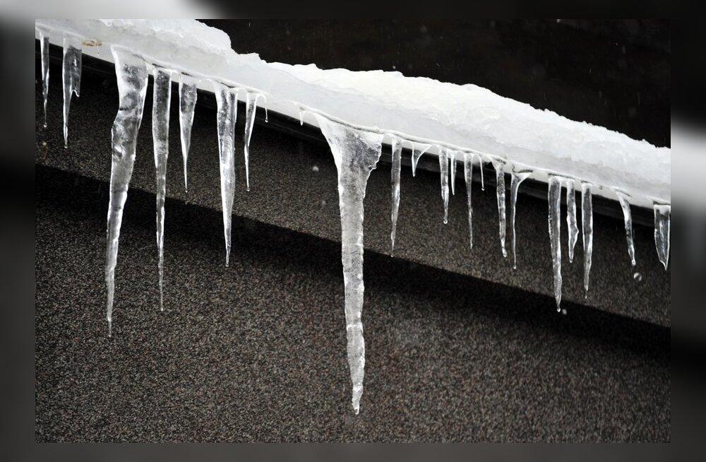 Lumi tuleb ehitiste katustelt õigeaegselt ära koristada ja kõnnitee eest vastutab kinnistu omanik
