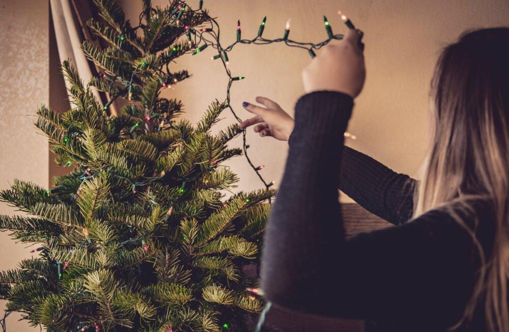Naine kurdab: mu ämm vihkab mind ja peale viit aastat teesklemist olen otsustanud, et maksku, mis maksab, enam ma temaga koos jõule ei veeda
