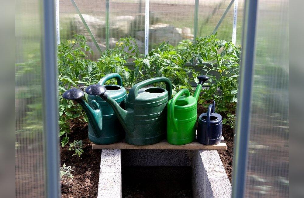 Taimekaitsevahendid — kasutada või mitte