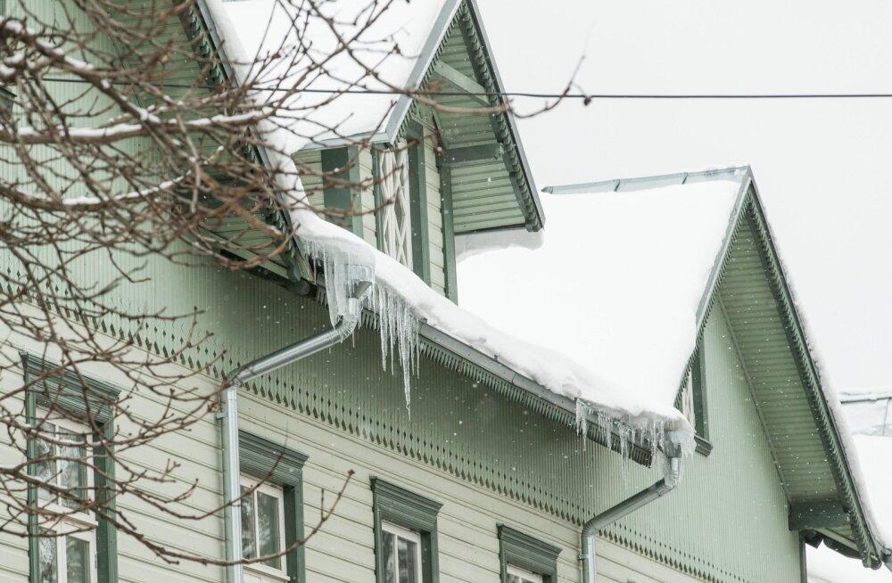 Lumi ja jääpurikad, mustamäel ja kalamajas