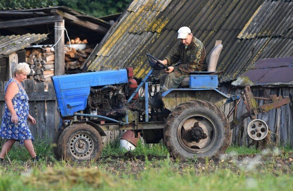 Valgevene põllupidaja.