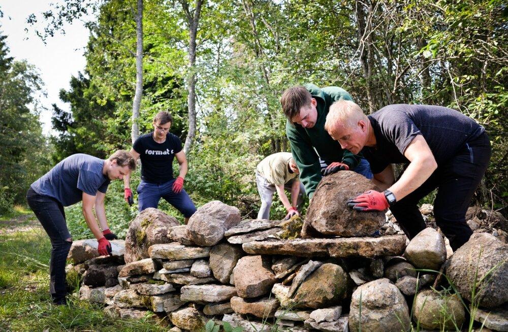 Swedbanki töötajad Siim Kinks, Märt Mäepalo, Indrek Übius, Rait Maltsaar ja Priit Vain ehitavad Kabala kooli juures kiviseina.