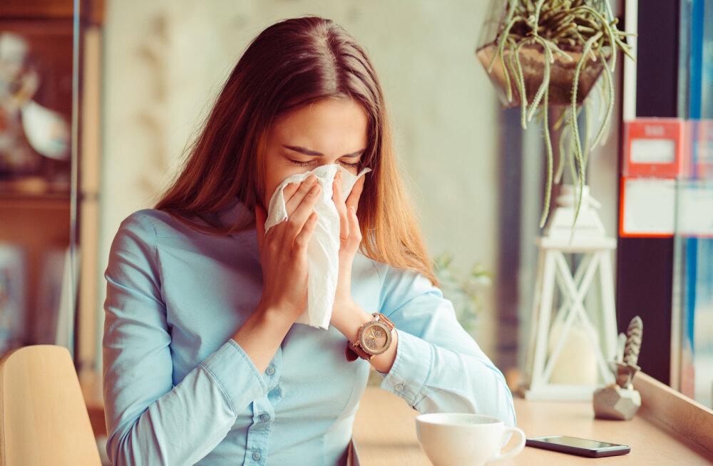 557eb38428d Allergiaravimid ja looduslikud abinõud: kuidas kevadallergiate keskel ellu  jääda?