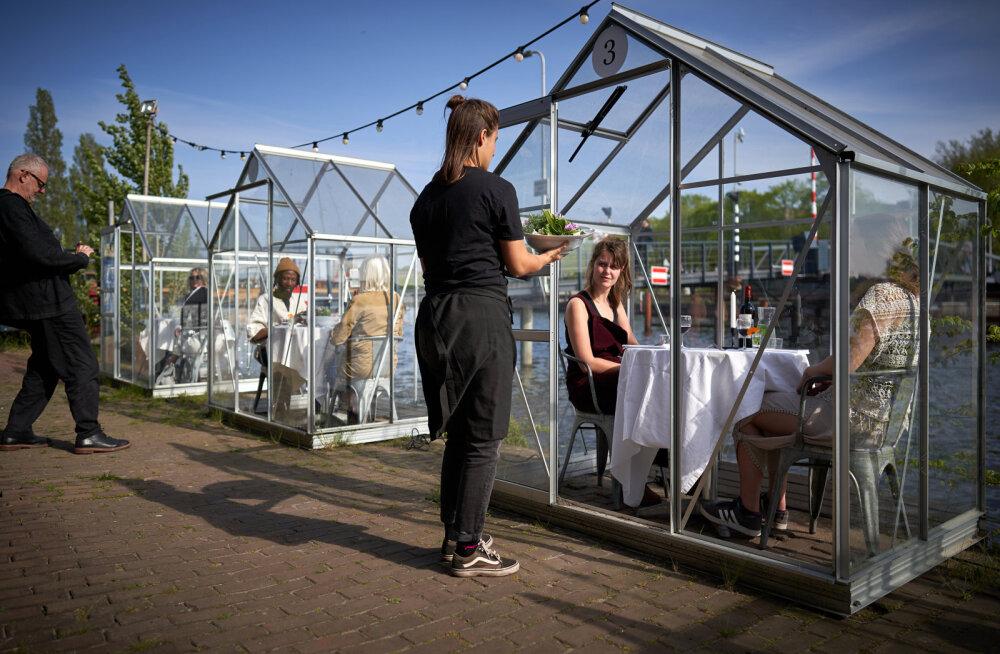 ВИДЕО | Как в теплице: в Амстердаме изобрели безопасный способ посещения ресторанов