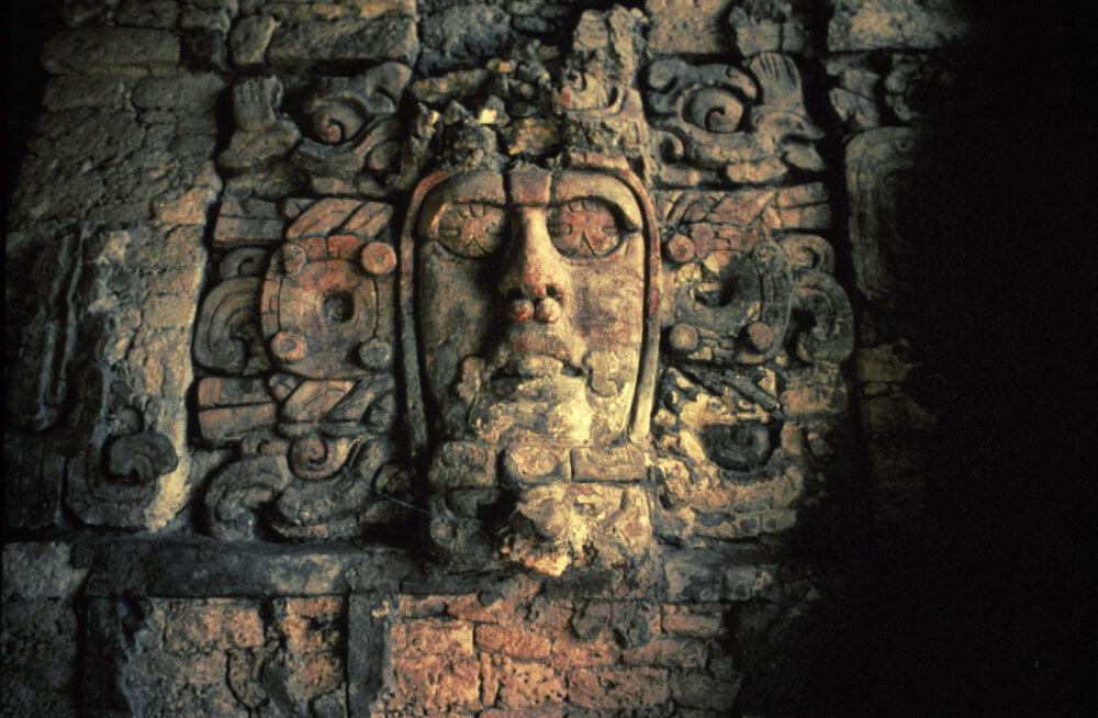 В джунглях Мексики нашли древний дворец майя. Его длина сопоставима с футбольным полем