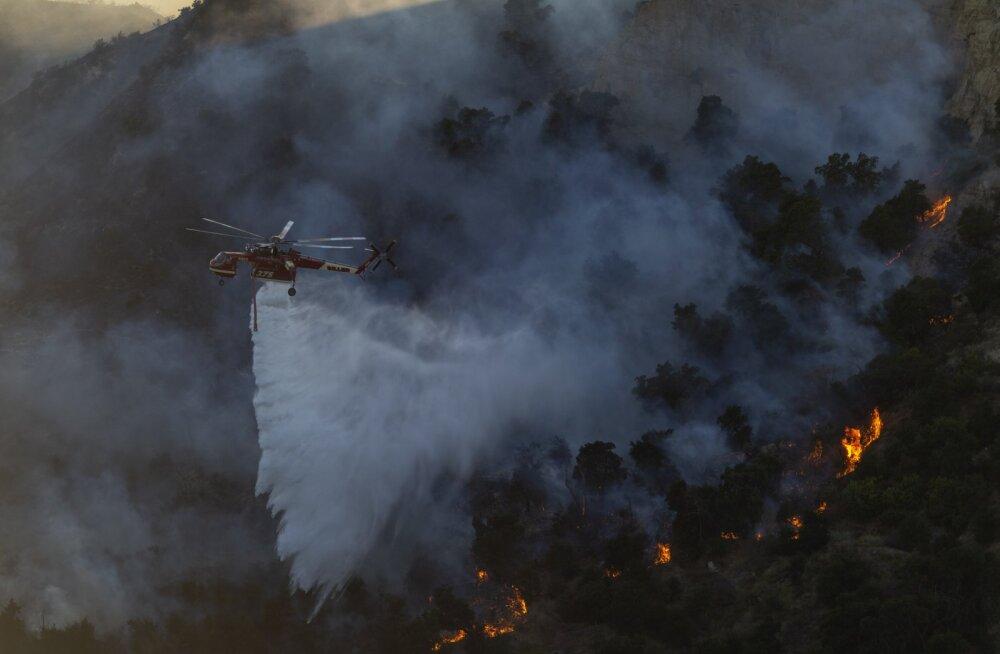 Los Angelese külje all möllab mitu kiiresti laienevat metsatulekahju, sajad kodud on langenud tuleroaks
