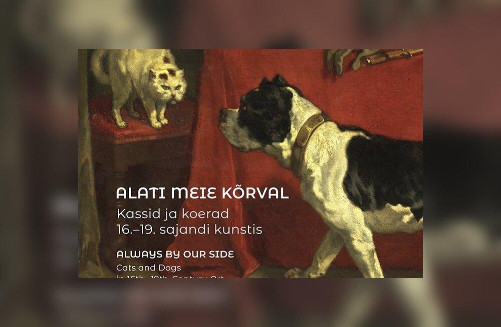 Lemmikloomad lõuendil: Kadrioru kunstimuuseumis näeb kasse ja koeri kunstiajaloos