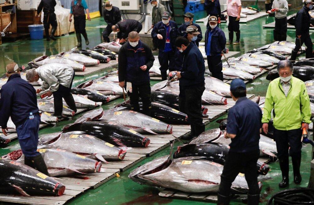 Hulgimüüjad maailma suurimal Toyosu kalaturul Tokyos.