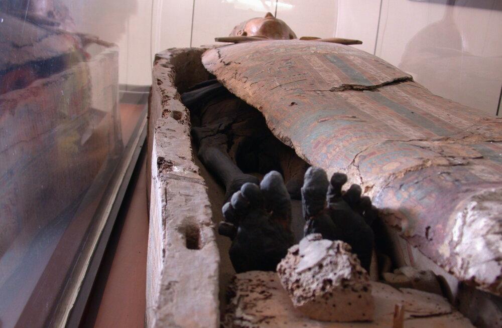 Teadlased valmistasid ehtsa muumiajala – Egiptuse iidsed palsameerimisnipid töötavad!
