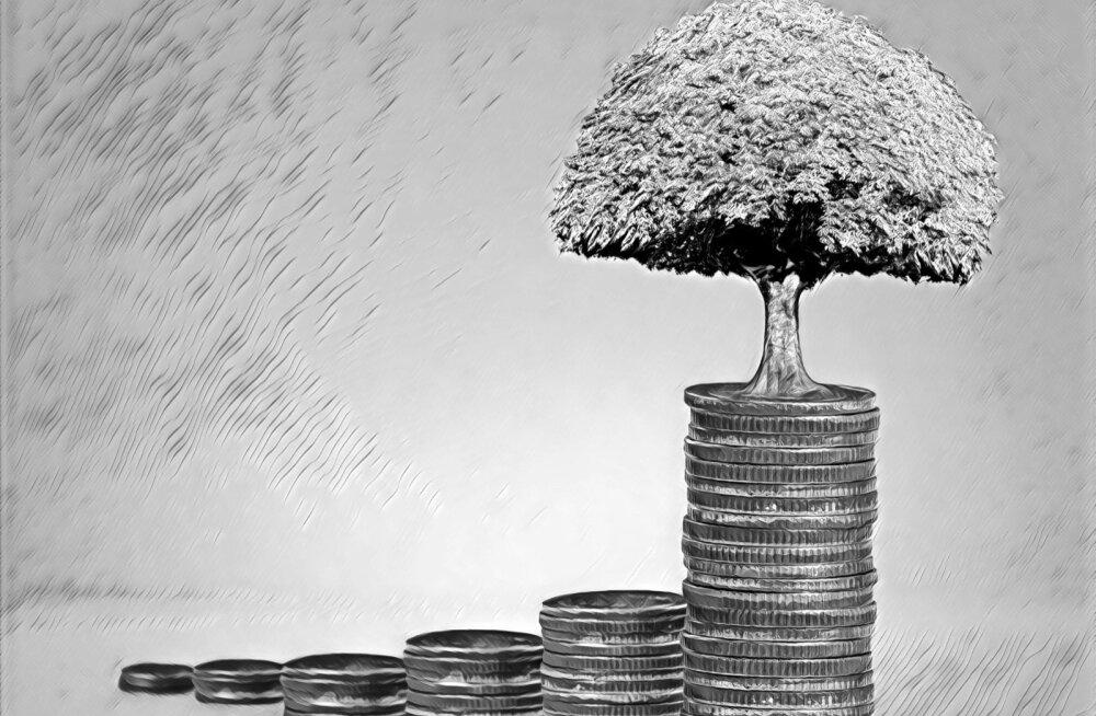 TULEVIKU EESTI   Tallinna börsi juht: raha ei tule seinast. Asutagem riigi tulude kasvatamiseks Eesti Riiklik Investeerimisfond