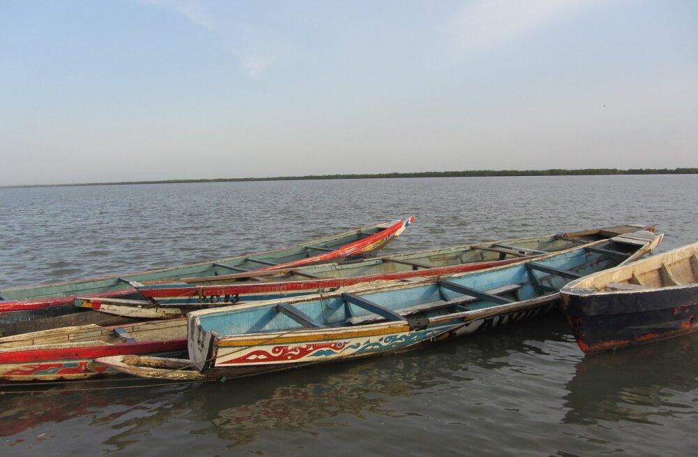 В Сенегале около 200 рыбаков заразились неизвестной болезнью