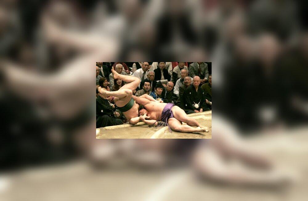 Homasho heidab Hatsu-basho sumo suurturniiril  Kotooshu ringist välja