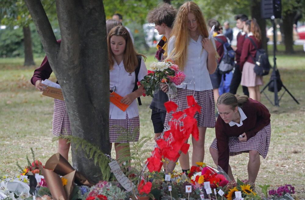 Новая Зеландия ужесточает контроль над владением оружия. Что происходит в стране после теракта?