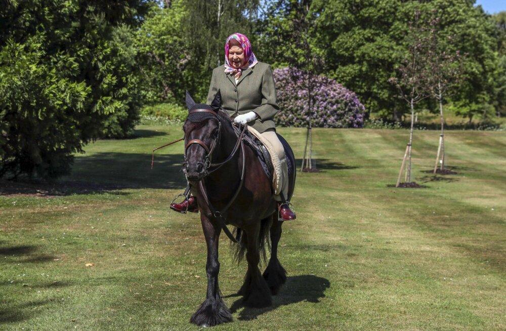 KLÕPS   94-aastane kuninganna Elizabeth II ronis üle pika aja taas hobuse selga