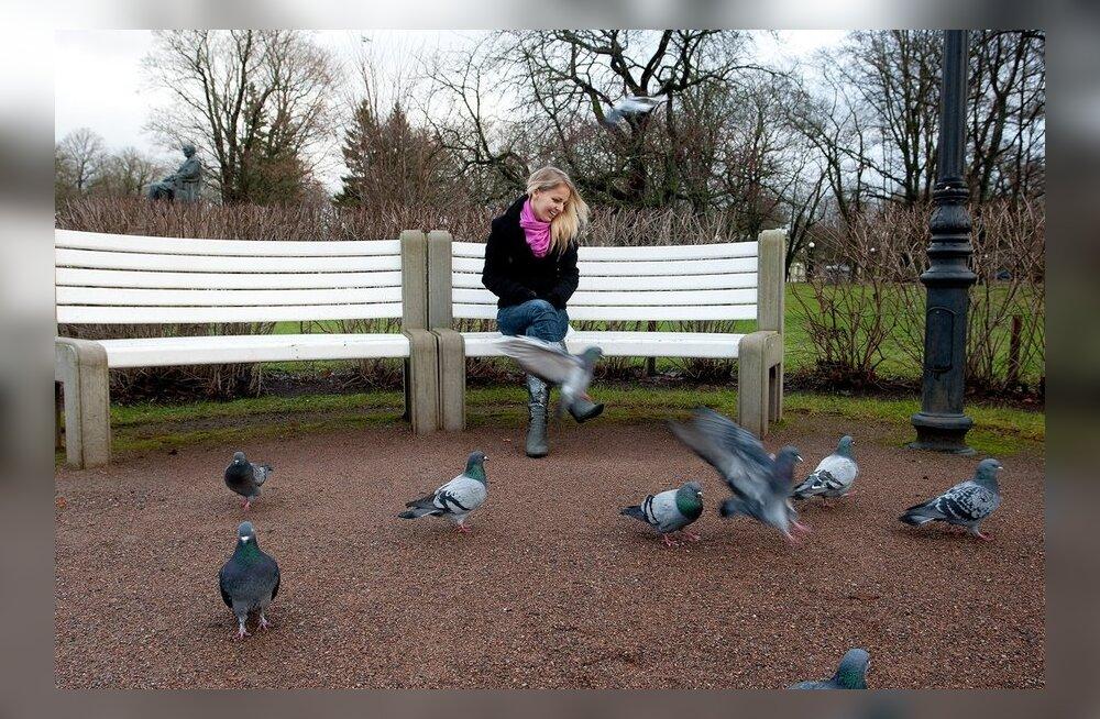 Saaremaal avastati lindudel võigas nakkushaigus