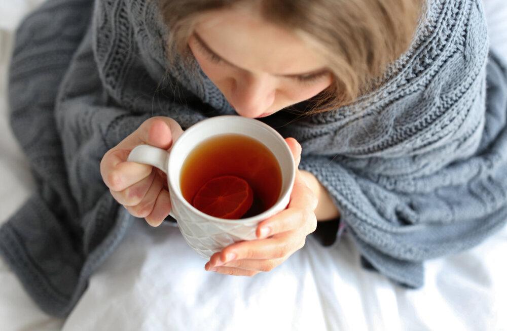 Kust leida palaviku puhul looduslikku leevendust?