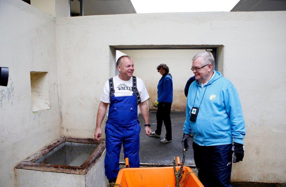 Edgar Savisaar ja Jüri Mõis Tallinna Loomaaias ninasarviku puuri puhastamas